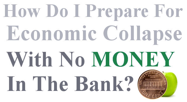 No Money Economic Collapse