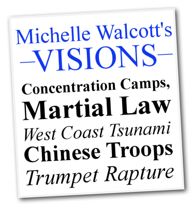 Michelle-Walcotts-Visions