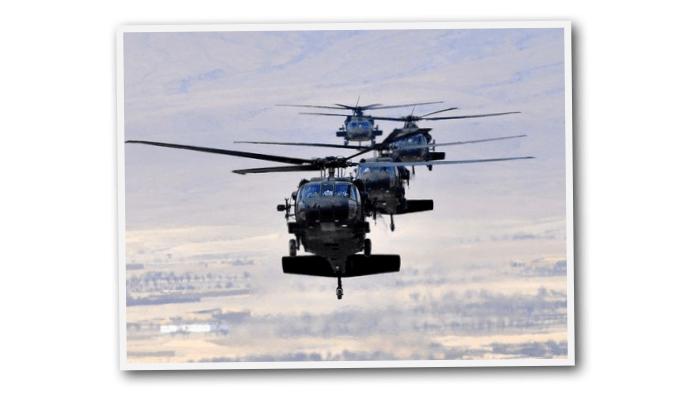 Russian Black Hawk