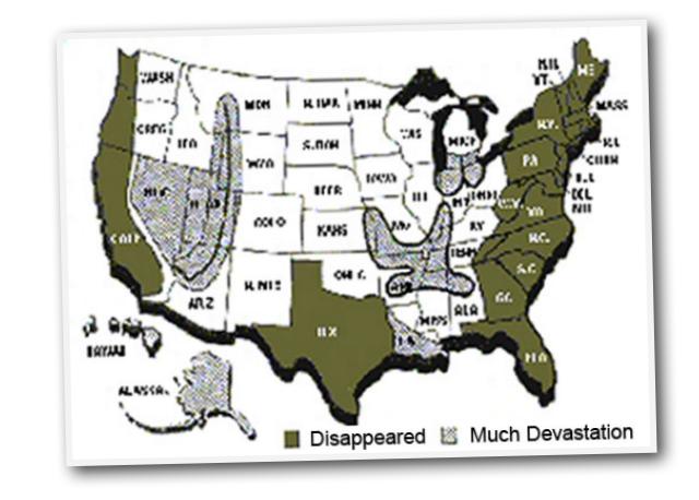 nita-johnsons-map